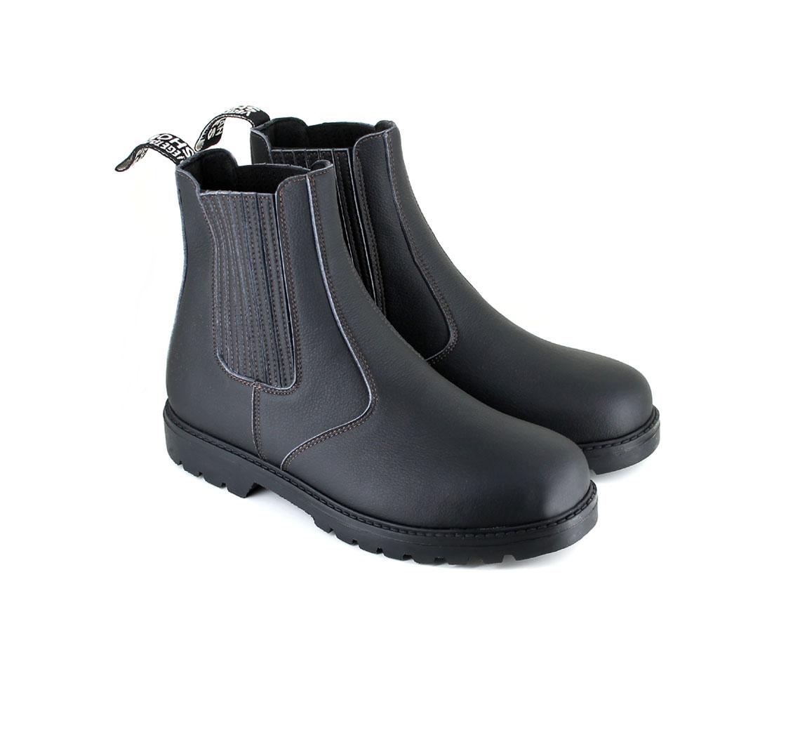 Chaussure Gobi 2 Boot
